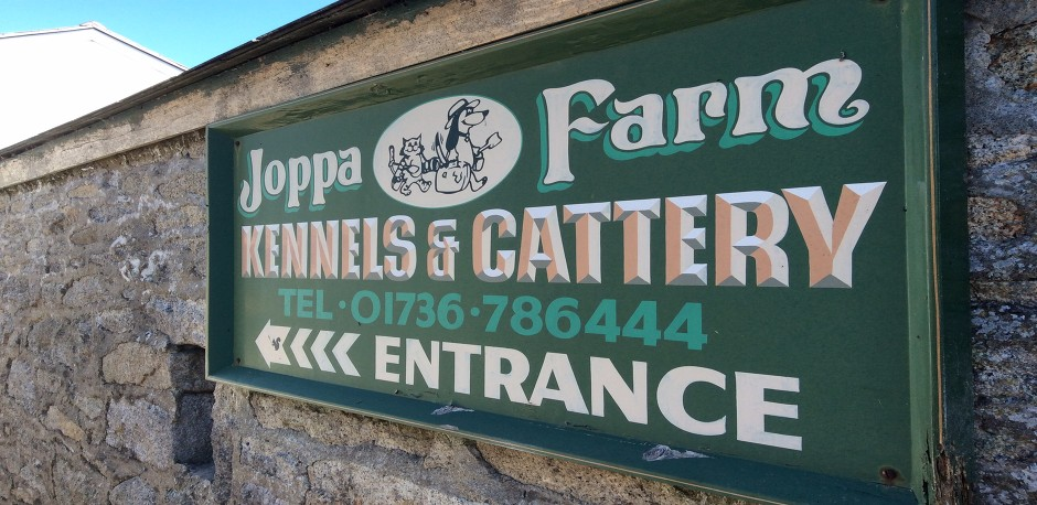 An affordable kennel & cattery in Penzance
